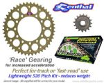 LIGHTWEIGHT 520 Pitch - RACE GEARING: Renthal Sprockets and GOLD Renthal SRS Chain - Aprilia RSV Mille R/SP (01-03)